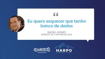 Special Dog e a transformação da Gestão de TI: menos suporte, mais estratégico